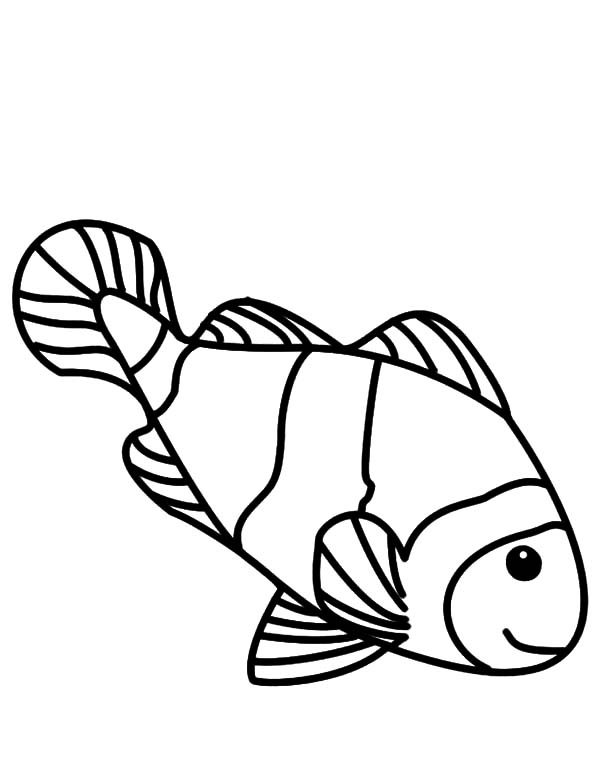 Coloring Pages Of A Clown Fish Freecoloring4u Com Clown Fish Coloring Pages