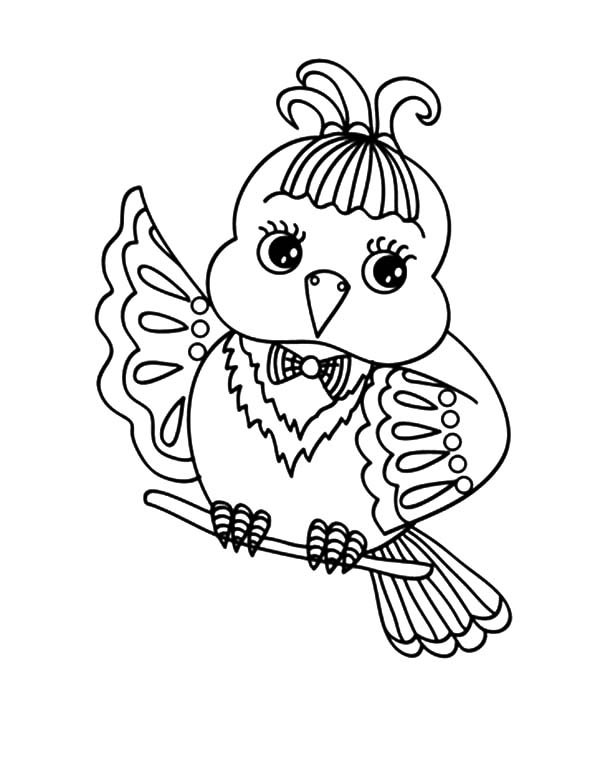 Cute Canary Bird Coloring Pages | Best Place to Color