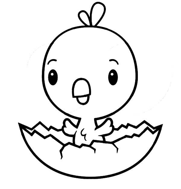 Chick Hatching, : Cute Chick Hatching Coloring Pages