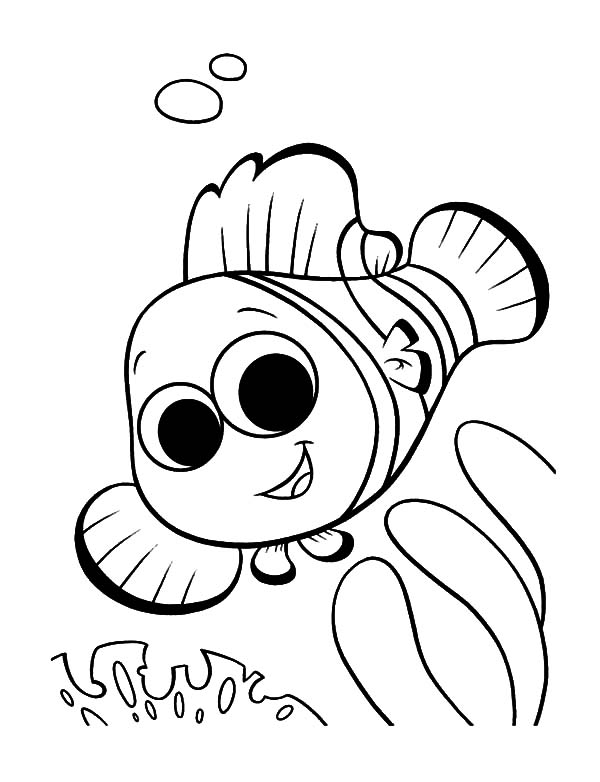 Clown Fish, : Cute Little Clown Fish Coloring Pages