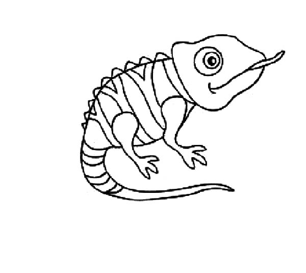 Chameleon, : Disney Tangled Pascal the Chameleon Coloring Pages