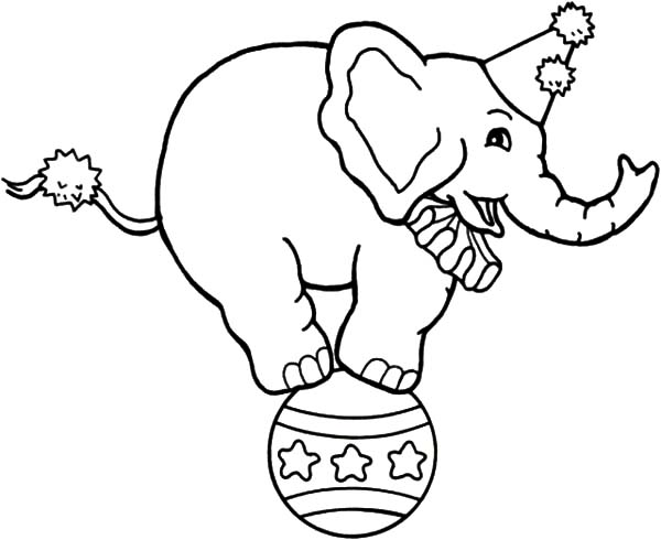 Circus Elephant, : Drawing Circus Elephant Coloring Pages