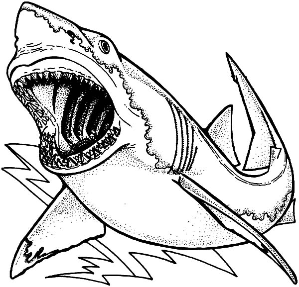 Jaws, : Drawing Jaws Coloring Pages
