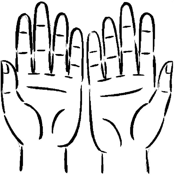 Hands, : Hands Anatomy Coloring Pages