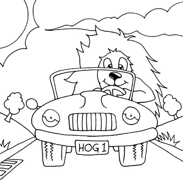 Car Driving, : Hedgehog Car Driving Coloring Pages