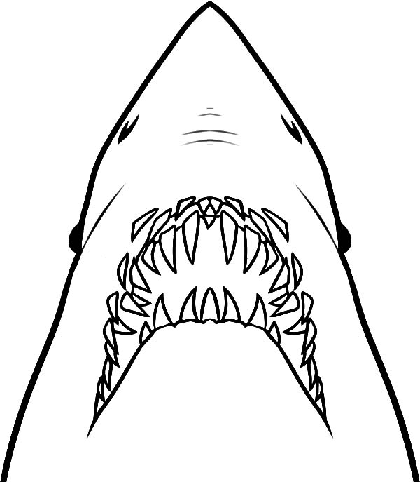 Jaws, : Jaws Ready to Ripped Out Coloring Pages