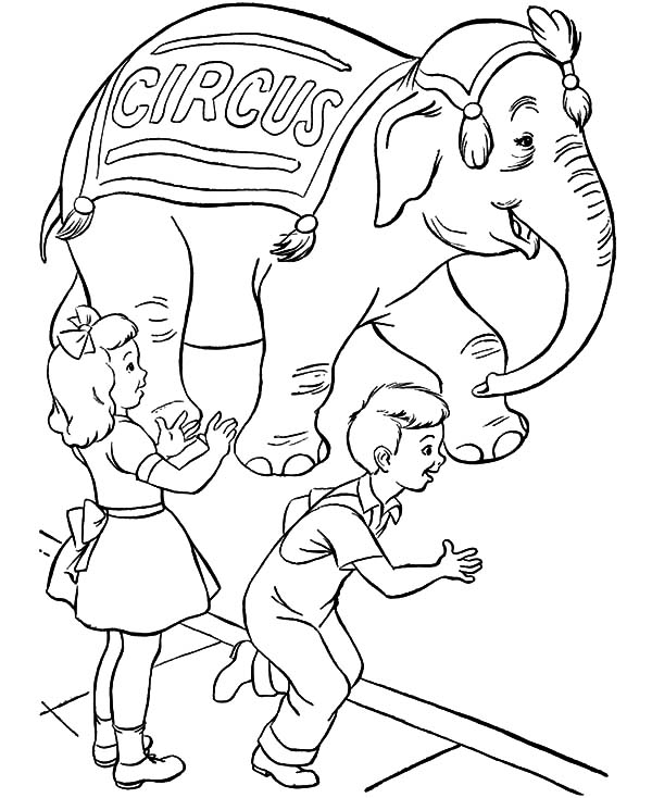 Circus Elephant, : Kids Love Circus Elephant Coloring Pages
