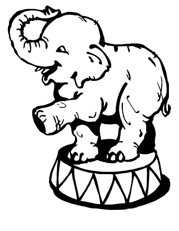 Circus Elephant, : Little Circus Elephant Coloring Pages
