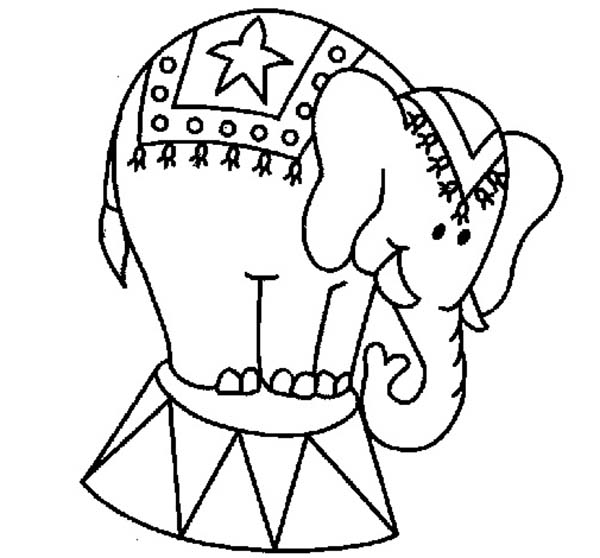 Drawing Circus Elephant Coloring Pages Drawing Circus Circus Elephant Coloring Page