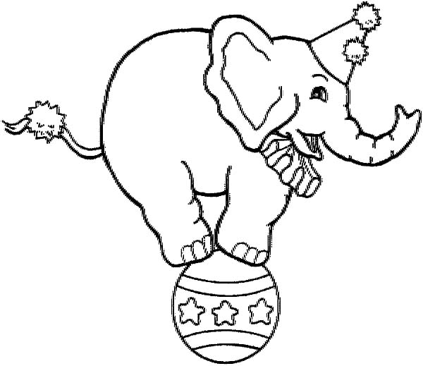 Circus Elephant, : Picture of Circus Elephant Coloring Pages
