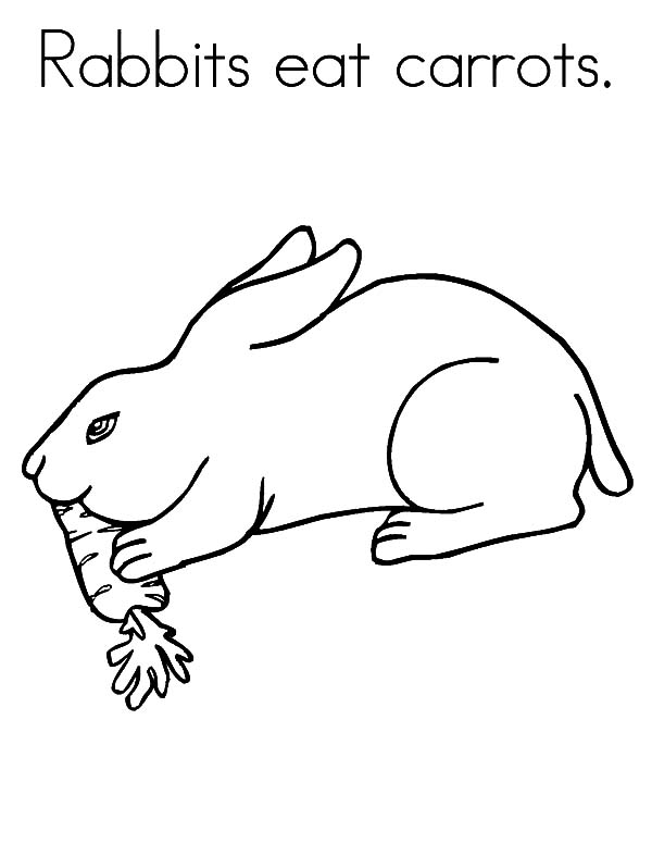 Carrot, : Rabbit Eat Carrot Coloring Pages