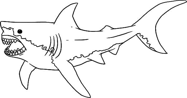scarey jaws the shark   free coloring pages