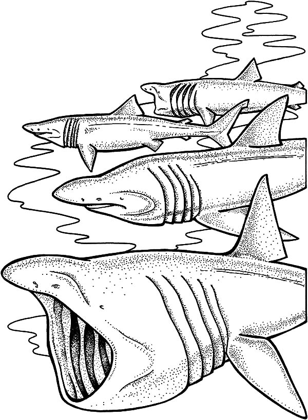 Movie Poster Jaws Coloring Pages