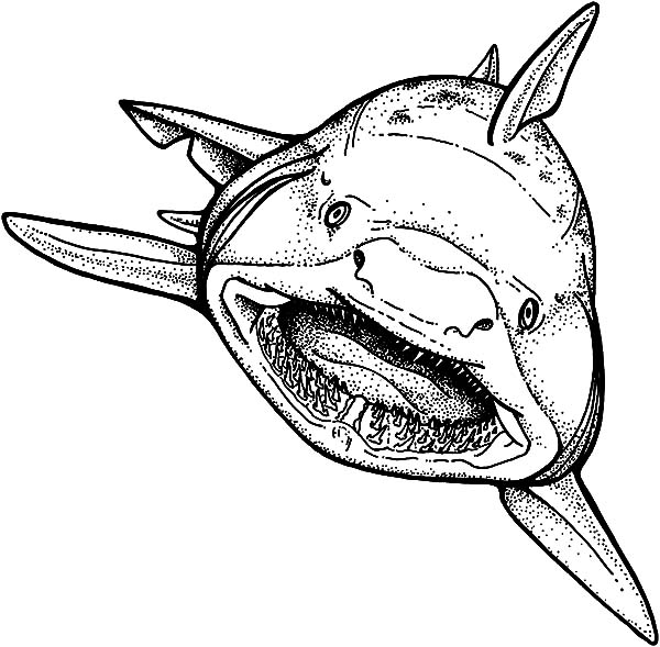 Jaws, : Shark Strong Jaws Coloring Pages