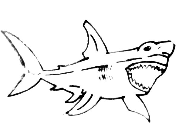 Jaws, : Sketch of Jaws Coloring Pages