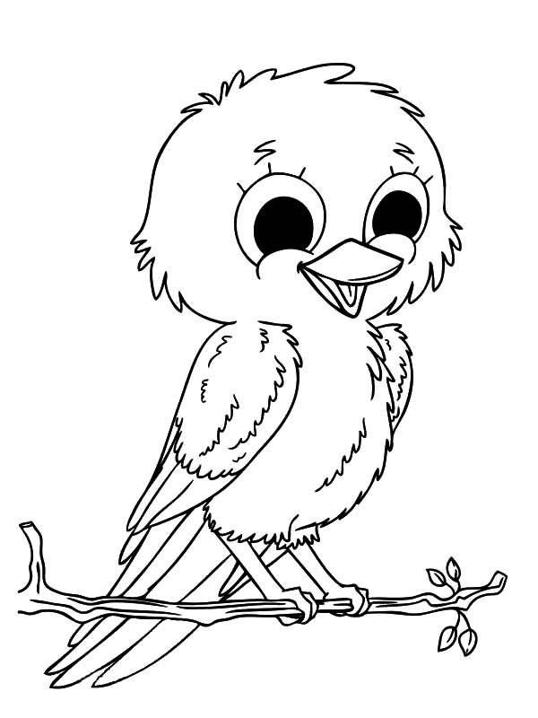 Canary Bird, : Smiling Baby Canary Bird Coloring Pages