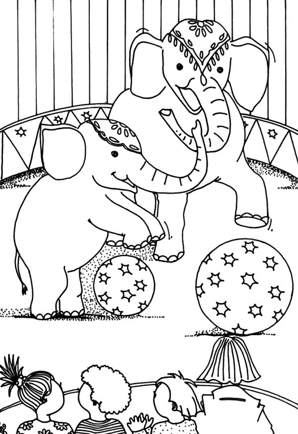 Circus Elephant, : Watching Circus Elephant Show Coloring Pages