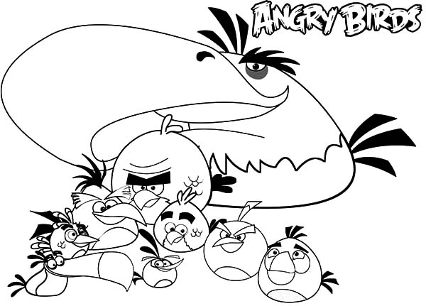 Angry Bird The Movie Coloring Pages : Best Place to Color