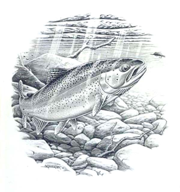картинка про рыбалку для выжигания каталоге модницы также