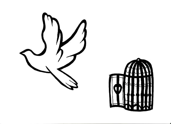 Bird Flying from Bird Cage Coloring