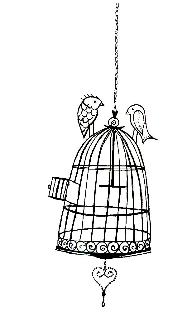 Birds Dating On Bird Cage Coloring Pages Best Place To Color