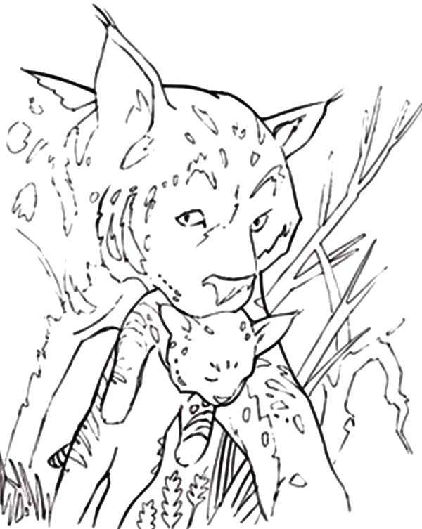 Bobcat Moved His Children Coloring Pages Best Place To Color