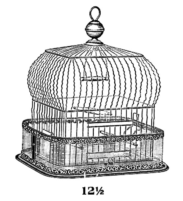 Vintage Bird Cage Coloring Pages