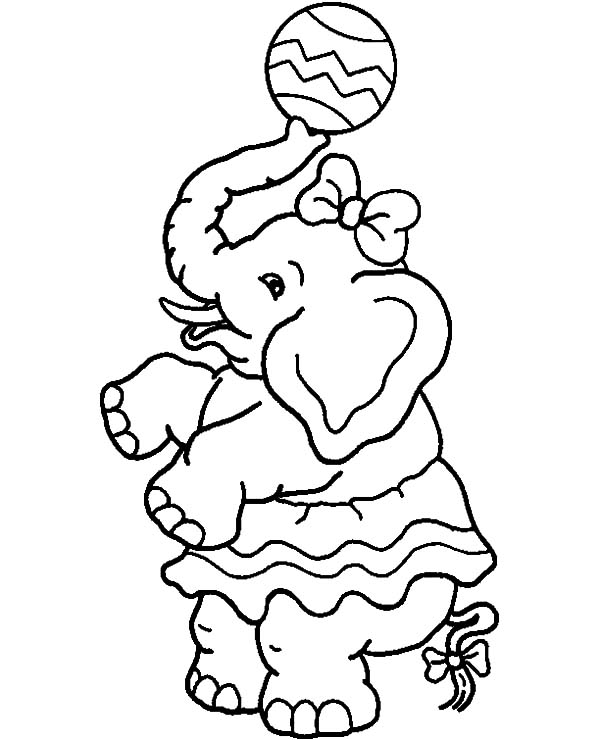 elephant with nuts coloring pages - photo#14