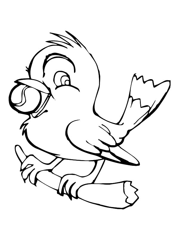 Canary Bird Sketch Coloring Pages