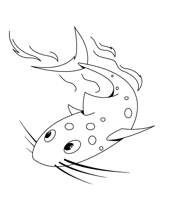 catfish with beuatiful eyes coloring pages