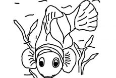 Clown Fish Coloring Pages : Best Place to Color